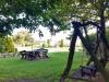 Park - huśtawka