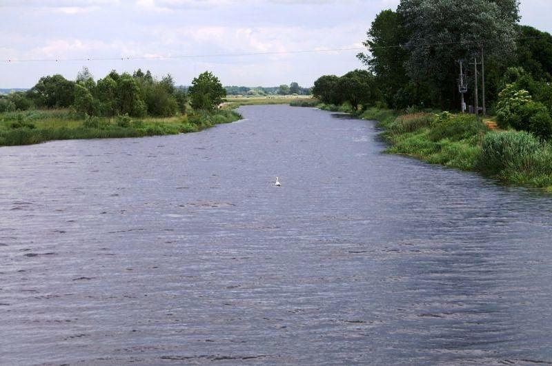 Widok z mostu w Tykocinie na rzekę Narew